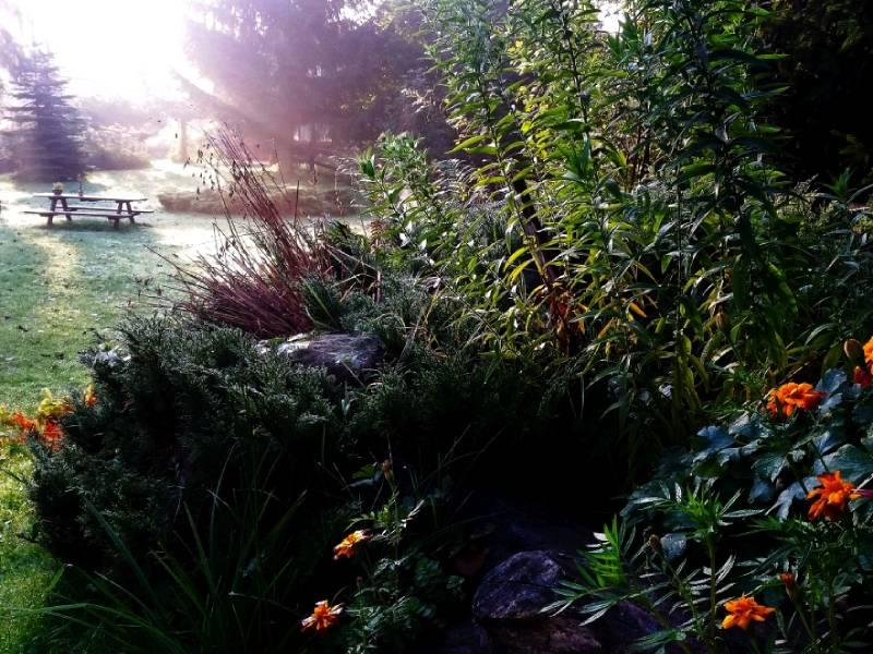 ostoja szamana-ogrod (5)