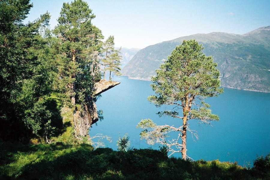 Ostoja szamana-Fiordy Norwegia (12)