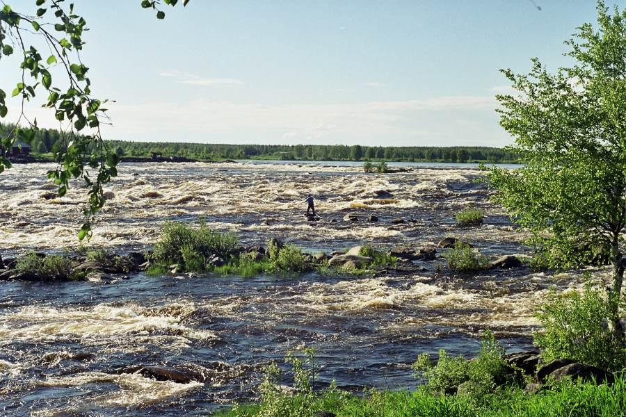 Ostoja szamana-Laponia (17)