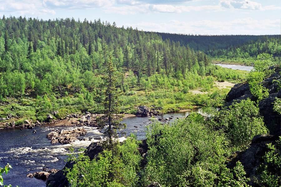 Ostoja szamana-Laponia (5)