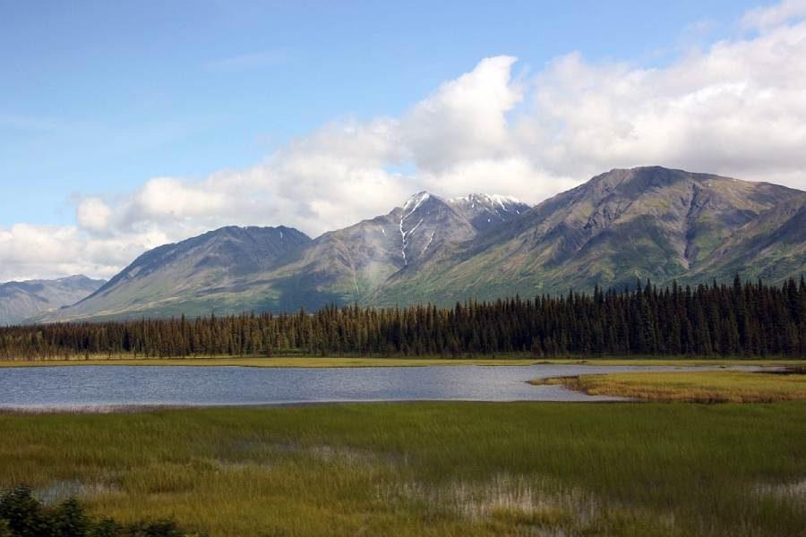 Ostoja szamana-Alaska -w pogoni za misiem (13)