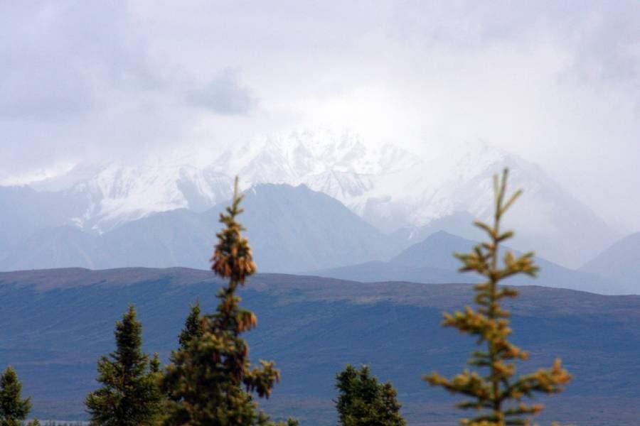 Ostoja szamana-Alaska -w pogoni za misiem (22)