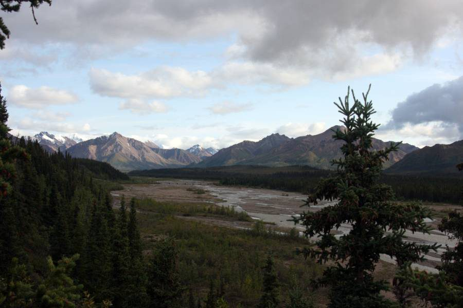 Ostoja szamana-Alaska -w pogoni za misiem (24)