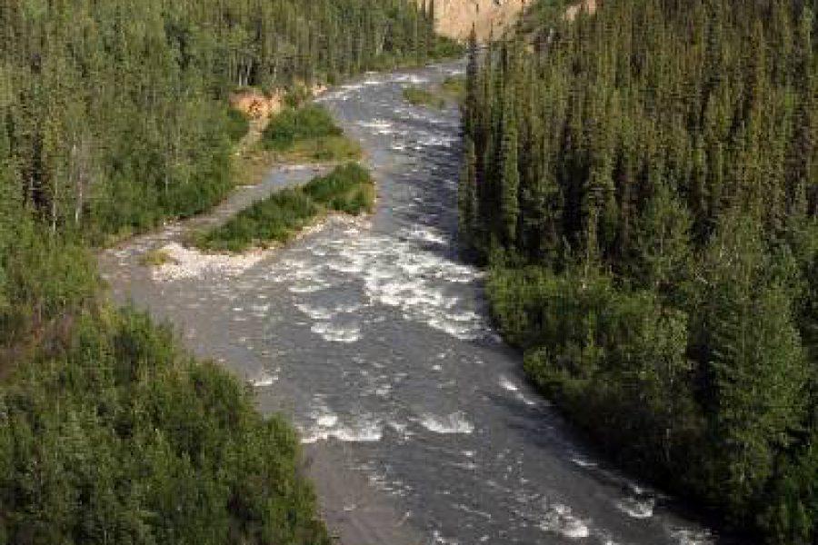 Ostoja szamana-Alaska -w pogoni za misiem (27)