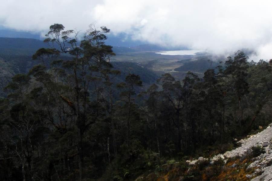 Ostoja szamana-Irian Jaya – samotnie wśród ludożerców (10)