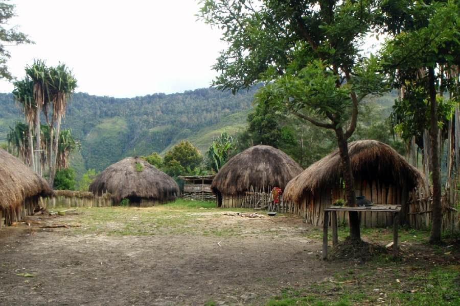Ostoja szamana-Irian Jaya – samotnie wśród ludożerców (21)