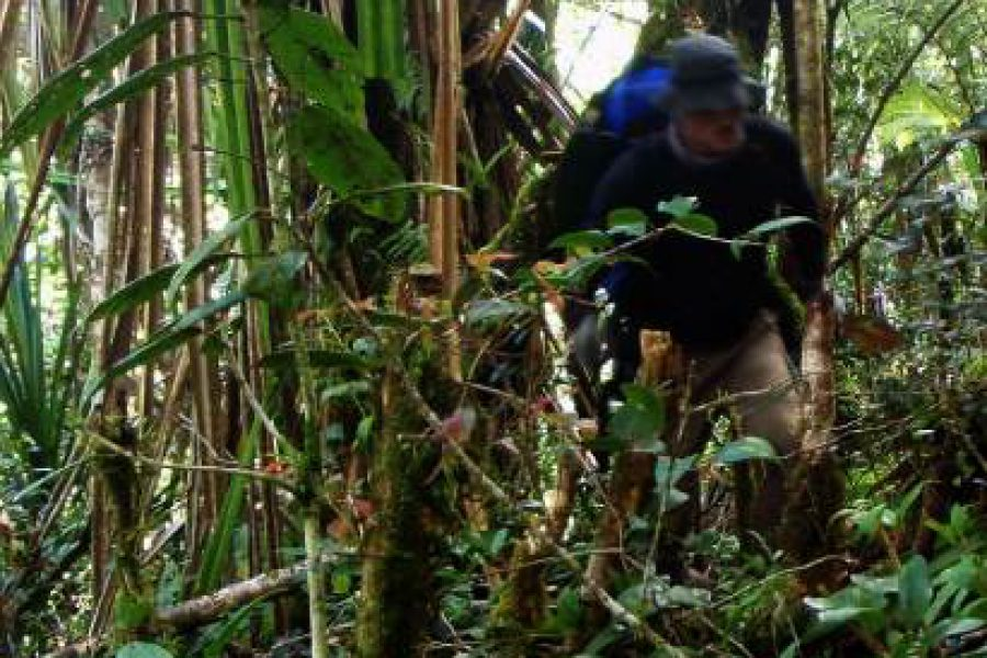 Ostoja szamana-Irian Jaya – samotnie wśród ludożerców (23)