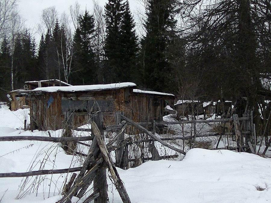 Ostoja szamana-Syberia zimą Żopa Mira (6)