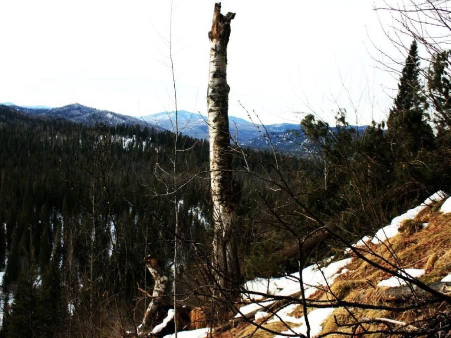 Ostoja szamana-Syberia zimą Żopa Mira (9)